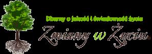 logo_zmianywzyciu